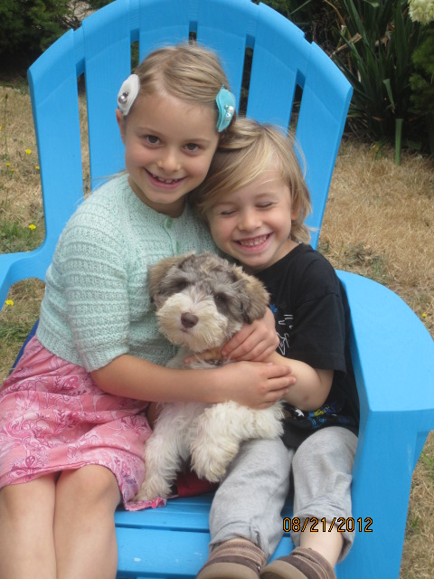 kids-and-puppy