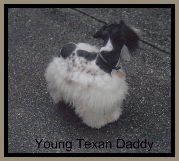texan-long-coat